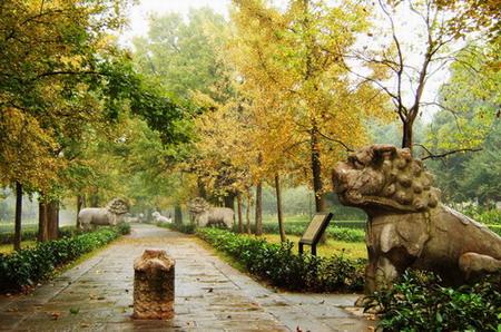 道 摄影欣赏 重庆园林景观设计公司,重庆绿城园林景观设计公司,